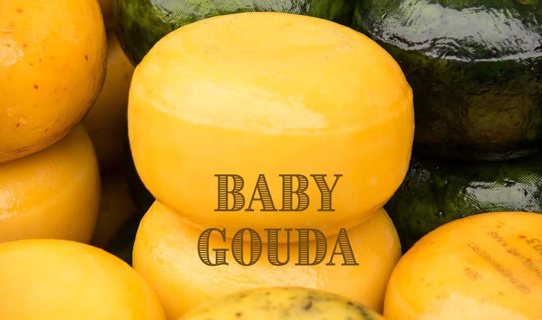 Baby Gouda Cheesemaking Recipe