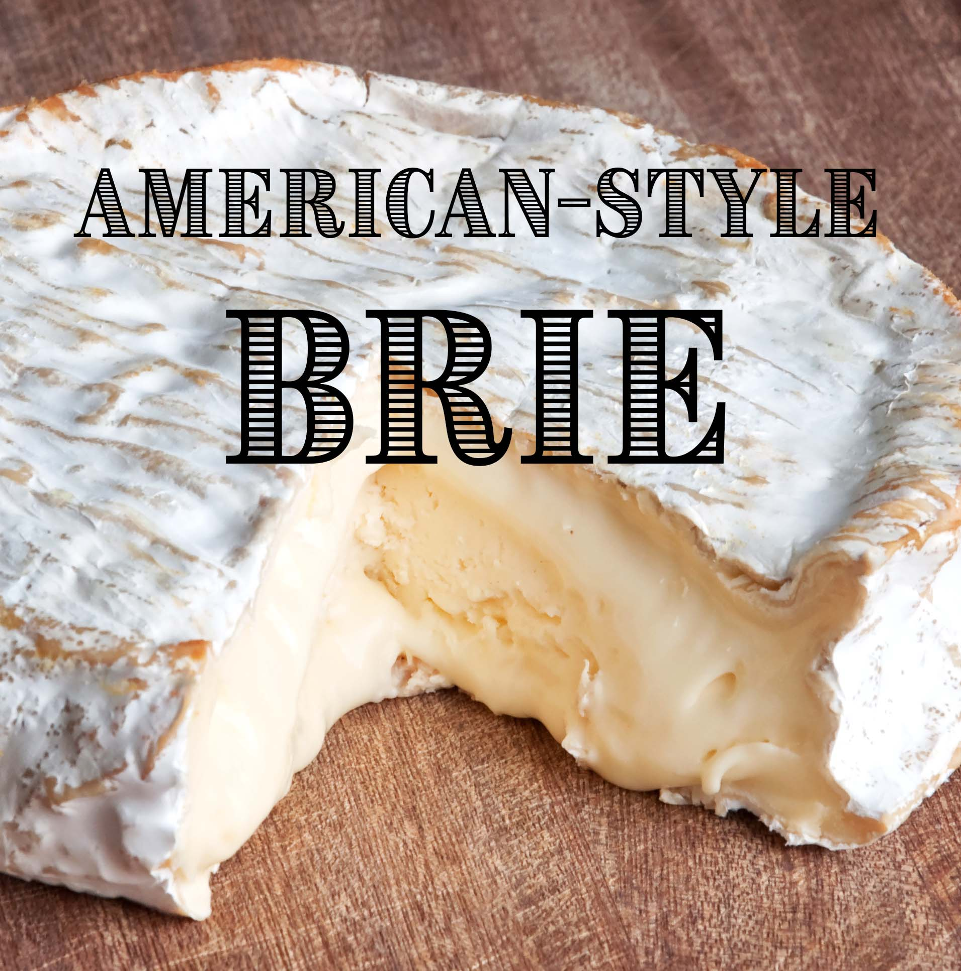 American-Style Brie Cheesemaking Recipe