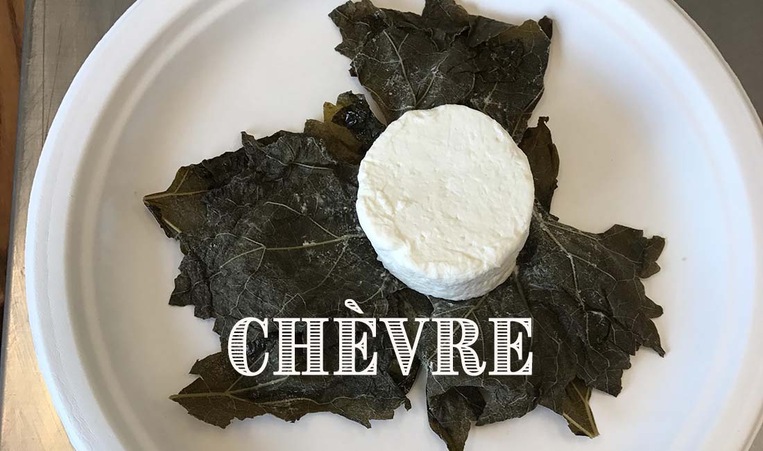 Chevre and Fromage Blanc Cheesemaking Recipe