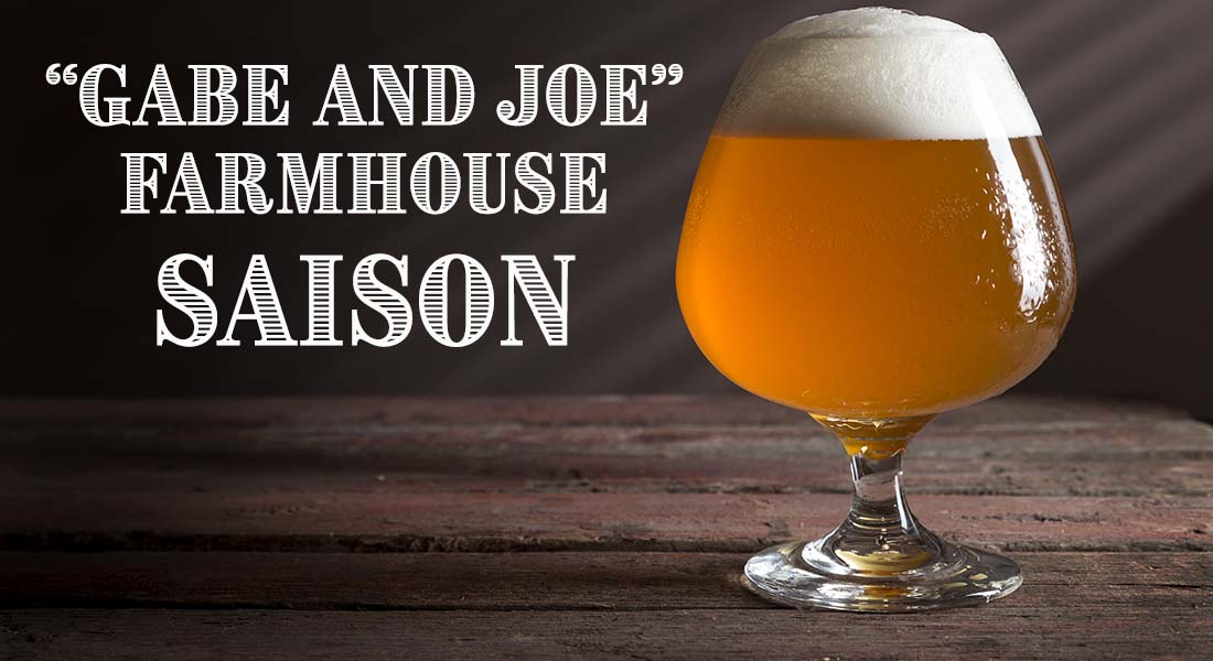 Gabe and Joe Farmhouse Ale Saison Recipe