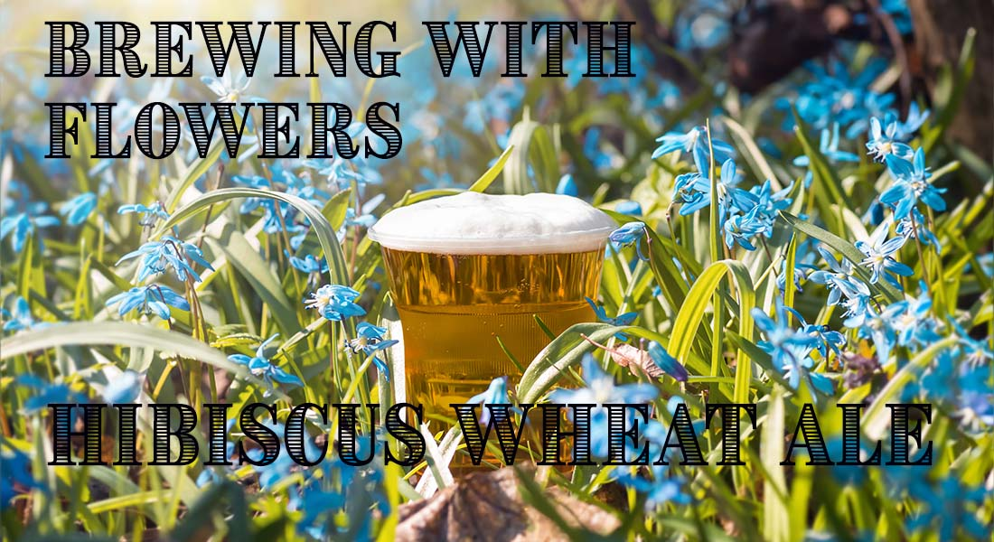 Brewing With Flowers Hibiscus Wheat Ale Recipe