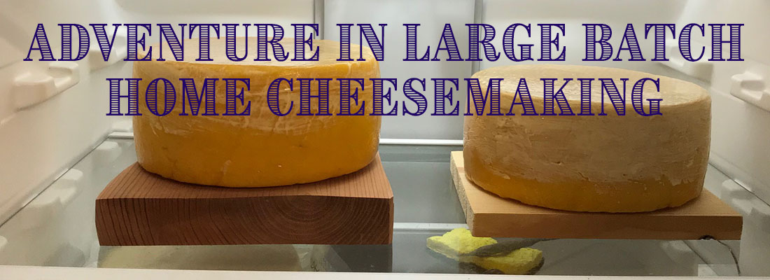 Large Batch Cheese Adventure Banner