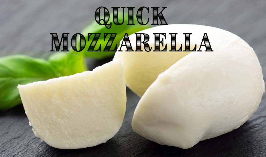 Quick 30 Minute Mozzarella Cheesemaking Recipe