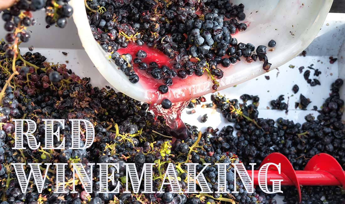 Red Winemaking Instructions