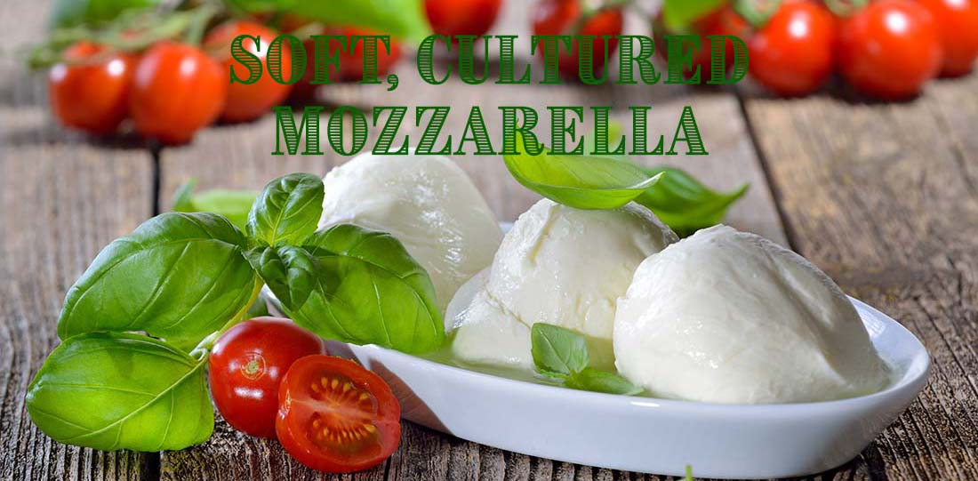 SoftMozzarellaRecipe
