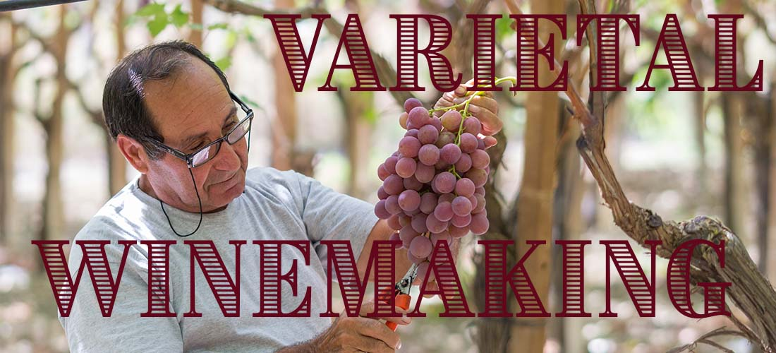 Varietal Winemaking at Home