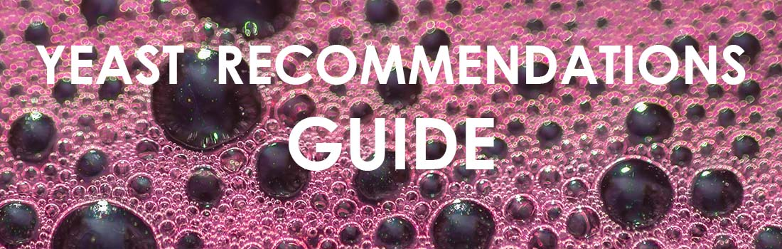 Yeast-Recommendations-Guide-Banner