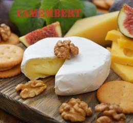 Specialty Cheese Making Kit for Camembert