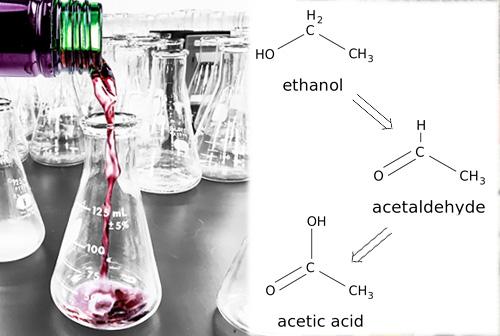 Wine Chemistry Class - Saturday, May 5, 2018, 1-4:30 pm