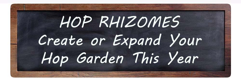 Chalkboard-Hop-Rhizomes