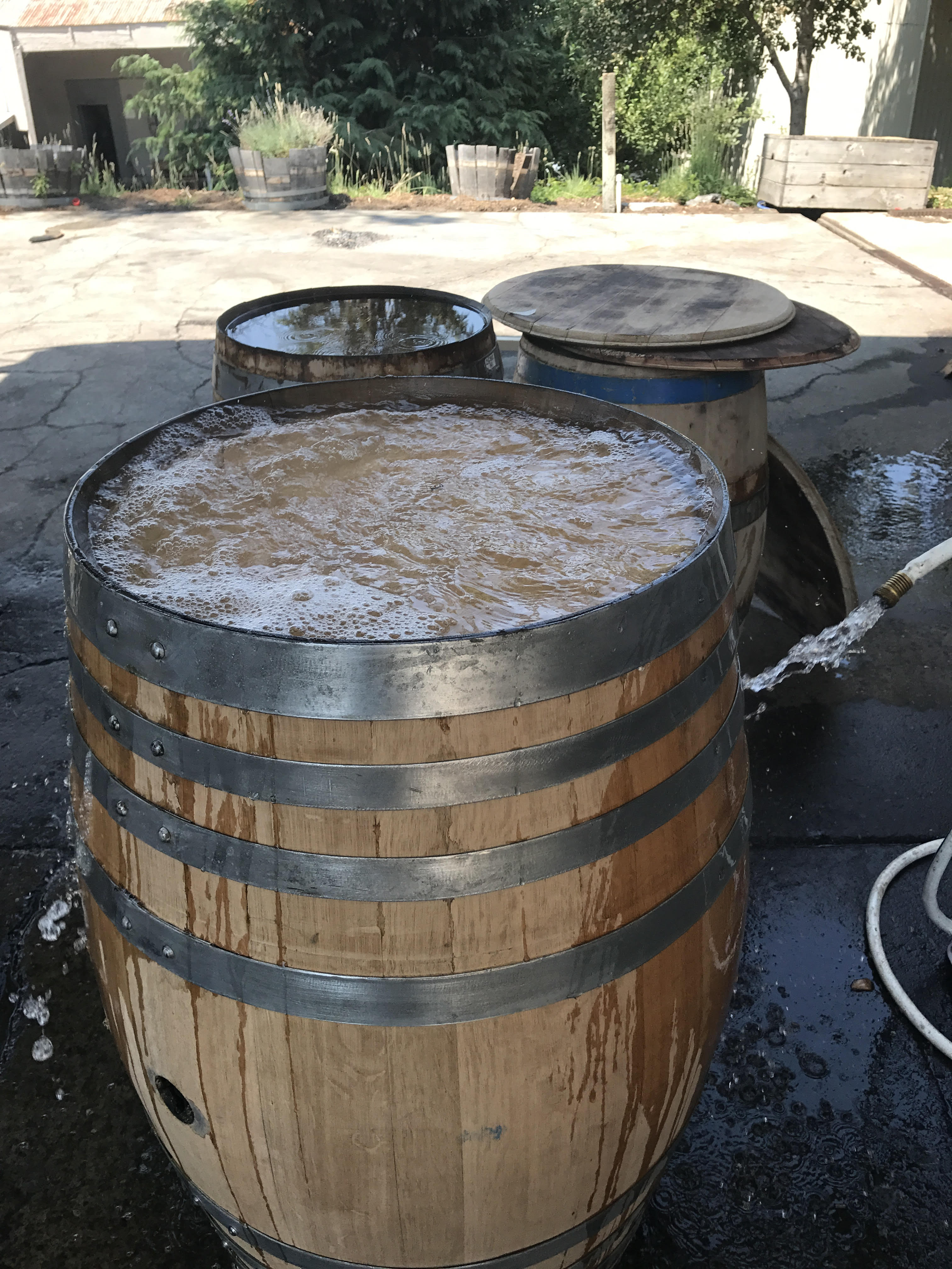 Important Step - Rehydrating Your Wine Barrel