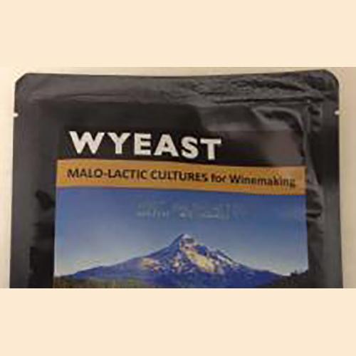 Wyeast 4007 MLF Bacterial Culture