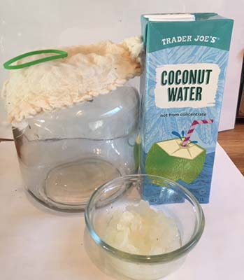 preparations for the coconut water kefir recipe