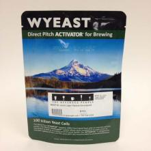 2007 St. Louis Lager Wyeast Smackpack