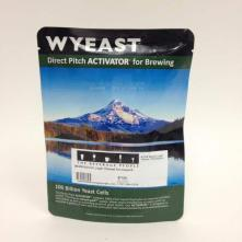 2308 Munich Lager Wyeast Smackpack