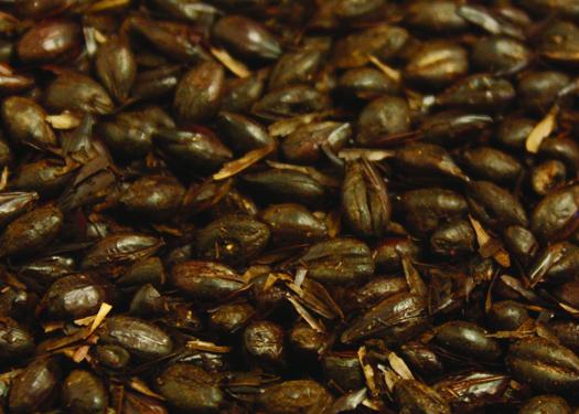 Briess Black Roasted Barley - 500L - Unmalted - 50 lbs.