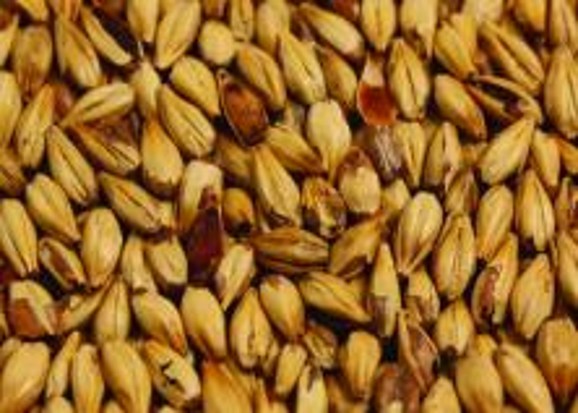 Briess Caramel Malt - 40L - 1 lb.